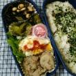 里芋と挽肉 お弁当