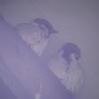 我が家の雀(スズメ)1