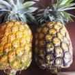 てぃーだの恵み第二弾「沖縄産マンゴー&パイナップル」がやって来た!