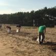 西の浜ボランティア清掃がありました