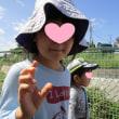 2018年9月19日(水)の【写真館】