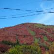2017.10.8那須の旅⑦茶臼岳への道