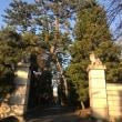 遅ればせながら初詣で。「世田谷八幡宮」と「豪徳寺」へ