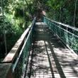 防災ハイキング ため池 飯盛山登山