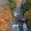 2650 秋彩の滝