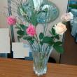 7月2回目の花