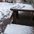 雪!雪!ゆきぃ~!!