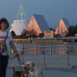 【魚津市の海の駅「蜃気楼」周辺をうろうろと・・・ Vol.1 ~車内の夏仕様&夕日編~】