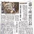 金華山上部 『信長の石垣』