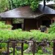 京の夏の旅と台風