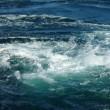 いとこ会と淡路の大鳴門渦潮見学