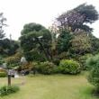 旧吉田茂邸宅
