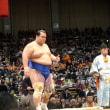 相撲 写真