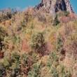 【古い写真】1990年11月 妙義山