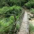 右田ヶ岳-散策