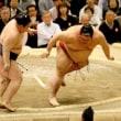 「鶴竜・魁聖譲らず9連勝、豪栄道3敗に後退…付け人暴行の貴公俊は休場」とのニュースっす。
