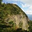 三ツ峠山登山 と 裏富士