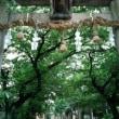『河内史跡巡り』八尾神社・大阪府八尾市にある神社。『延喜式神名帳』河内国若江郡の「栗栖神社」に比定され