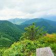 17-16:三国山《 上越国境 》気ままに山歩きsessk