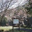 開田高原も暑いです