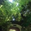 大山崎山荘美術館、まるでジブリ
