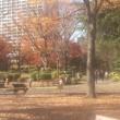 滞在型家庭菜園:千葉大学