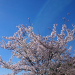 ~少し暑い春。~