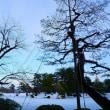 ●2月の雪の兼六園(5)親不知からの眺め