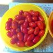 ★家庭菜園~巨大茄子を収穫!