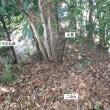 幡豆寺部城跡(2) 西尾市
