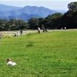 「八ヶ岳高原の初秋の風景をお楽しみ下さい」
