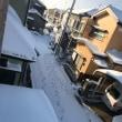 昨日の大雪でレッスンはお一人だけとなりました♪