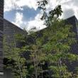 (仮称)暮らしと共に「め・で・る」家新築工事・・・外構(庭園・庭)エクステリア部分での建築空間と屋外の佇まいの印象操作、設計デザインの価値観を存在感という空気の配慮にライティングで。