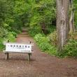 野幌森林公園・緑に包まれる