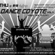 DANCE COYOTE