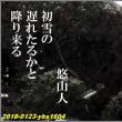 俳句写真1604 初雪の