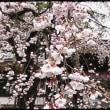 京都を巡る-14-