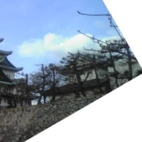 名古屋では「矢場とん」だがね。