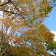 秋のミニコンサート開催+練習(10月15日)