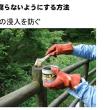 207.新人教育(木材の知識基本編):木材を腐らないようにする。その2