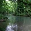 東北ツアー2日目;「あまちゃん」ロケ地と奥入瀬・十和田湖と囲炉裏会席と。