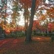 京都散歩。