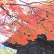 京の紅葉Ⅲ