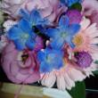 お花届きました。