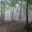 初登頂(池田山)