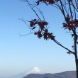 秋晴れ山散歩