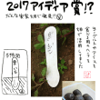 2017アイディア賞