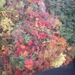 谷川岳の紅葉を見て参りました