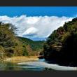 晩秋の神泉橋