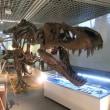 仙台市科学館「恐竜最前線」に行く。